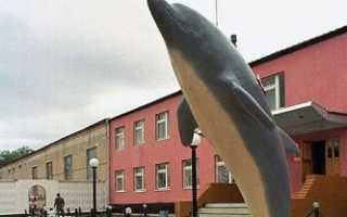 Тюрьма «Черный Дельфин» для пожизненно приговоренных