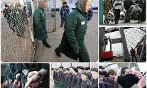 Почему уголовная амнистия всё-таки не была объявлена 23 февраля