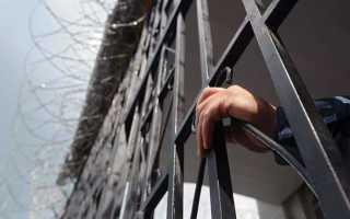 Рассуждения об уголовной амнистии: принципы и цели государства