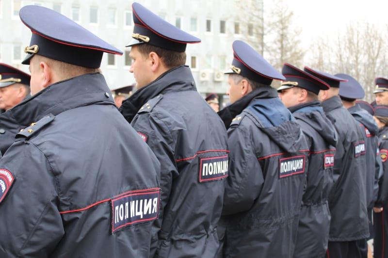 публичная деятельность полиции