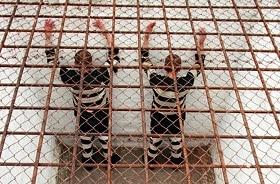 Пытки в тюрьме: как оно на самом деле, что делать и как поступать